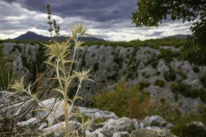mountains croati nature landscape