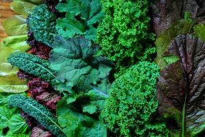 natural food food kale lettuce salad organic foods fresh food food preparation organic