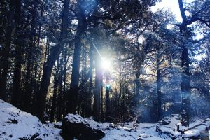 outdoor sky outdoor photography natural adventure trees himalaya mountain camping challenge