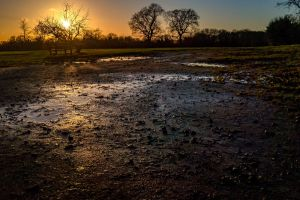 park bench sunset playing fields puddles wet park