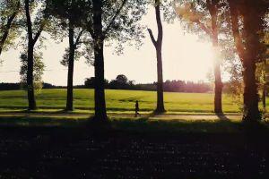 park walking woman trees foot path