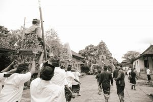 people bali black and white human tradition wedding culture balinese
