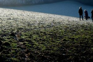 people dog cold frost walking