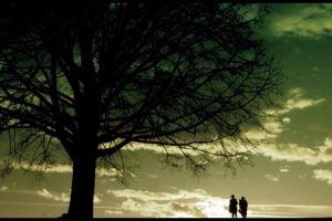 people sky tree walking