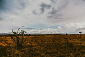 photography adventure nature wanderlust moody sky outdoor landscape