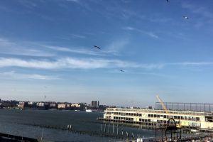 pier buildings water sky sea ocean crane
