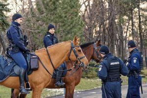 radio-transmitters snow grass park winter pathway rubber sticks trees meet gendarmes