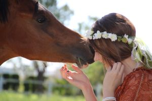 ride farm animals flowers pets fence farm animals girl people country