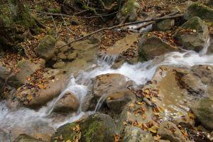 rocks nature stream flowing water