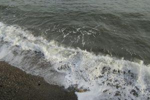 sea beach green crashing foaming waves ocean