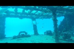 sea water underwater ship wreck fish ocean
