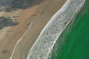 sea waves people seashore recreation seascape high angle shot sand water beach