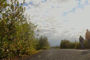 sky nature clouds men road walking plants daylight sunny