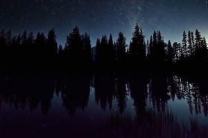 sky time-lapse motion nature trees stars night mountain universe