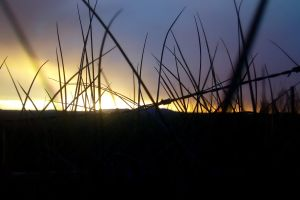 southafrica nkande kwazulunatal sunset outdoor