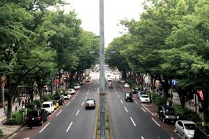 street driving traffic cars road moving people trees