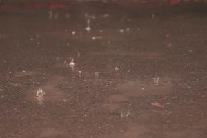 street walking raindrops vehicles pavement rain people weather raining
