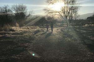 sunburst dog park mountains daughter pet trail family sun lens flare