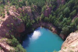 trees aerial shot nature scenic water