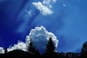 trees backlit cloudscape scenic idyllic cloudiness clouds scenery high sky