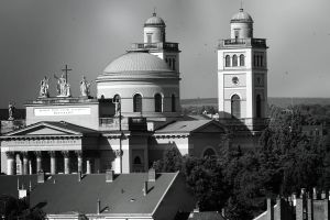 trees church buildings cathedral sculptures black and white architecture dome cross towers