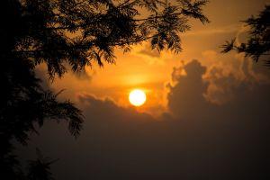 uphill nikon clouds mother nature nature bright sun-light sri lanka evening sun outdoor