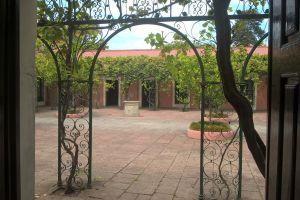 vintage patio garden