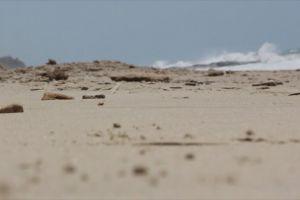 walking sand water rocks beach person daylight sea waves barefoot