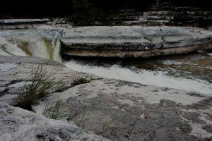 water flowing stream rocks grass