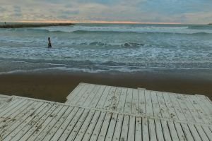 water ocean waves seafood sea shore seashore