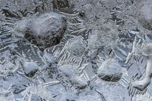 winter frost macro cold ice