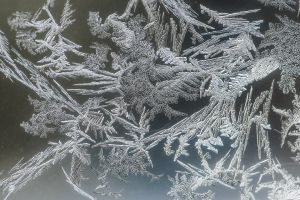 winter ice cold frost macro