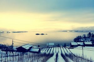 winter sunset scenic outdoorchallenge dawn houses snow sky water weather