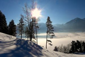 winter wonderland alps snow winter