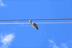 wires sky hanging sneakers perspective shoe tossing