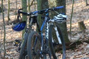 woods bicycles trails helmets adventure safety racing mountain bike mountain biking forest