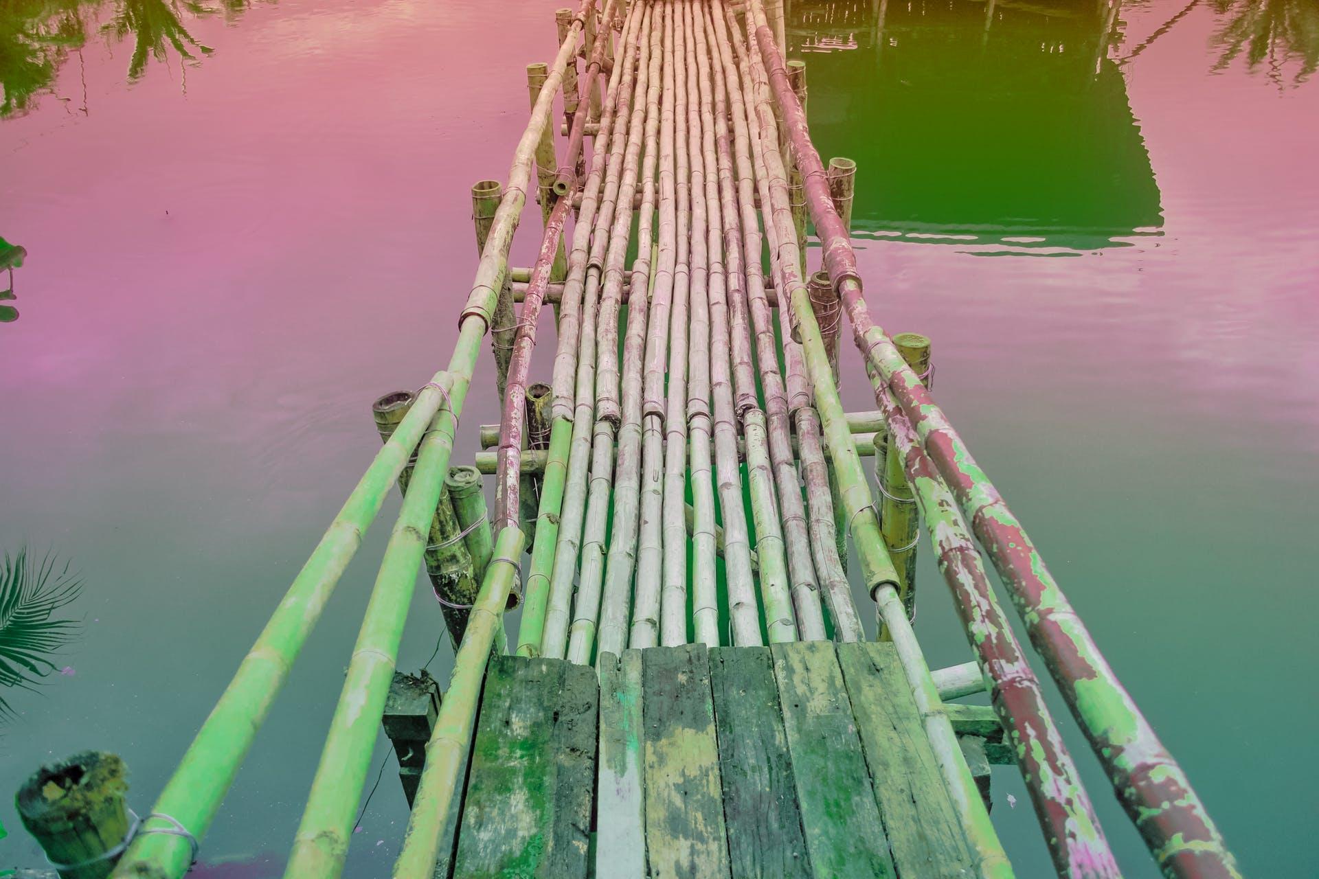 waterscape province edit green outdoorchallenge tropical outdoor bridge