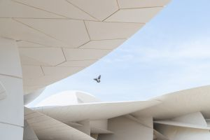 architecture birds qatar