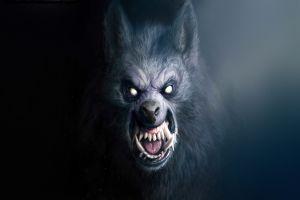 artwork fantasy art werewolf creature