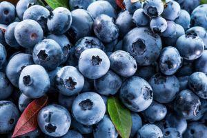 berries fruit blueberries food