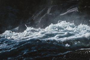 dark water nature
