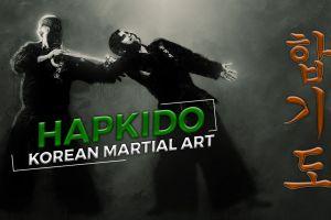 fighting martial arts typography hapkido