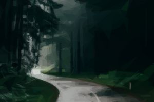 forest nature road trees landscape wood geometry