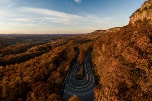 hairpin turns trees nature forest landscape road