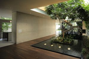 interior plants interior design architecture modern