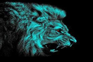 lion animals red eyes