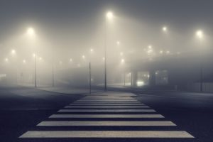 mist night street view street light city