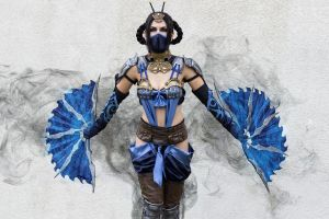 mortal kombat cosplay women model fantasy girl kitana