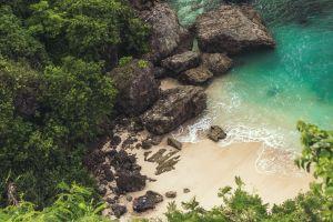 nature outdoors plants bird's eye view rocks beach sea trees