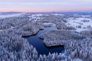 nature trees water landscape winter